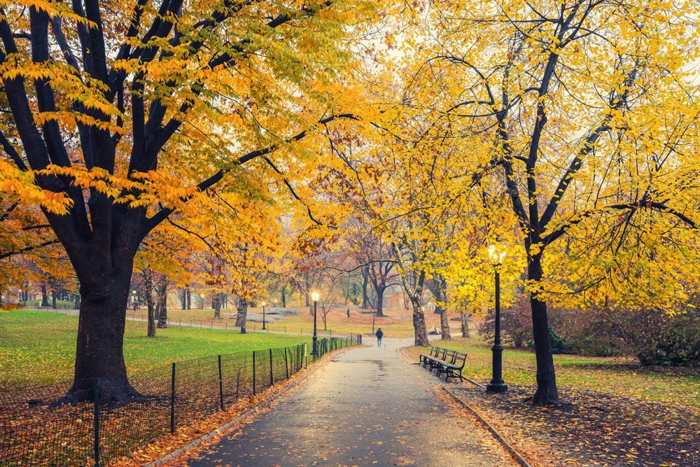 Top 10 Fall Destinations to Visit in 2019