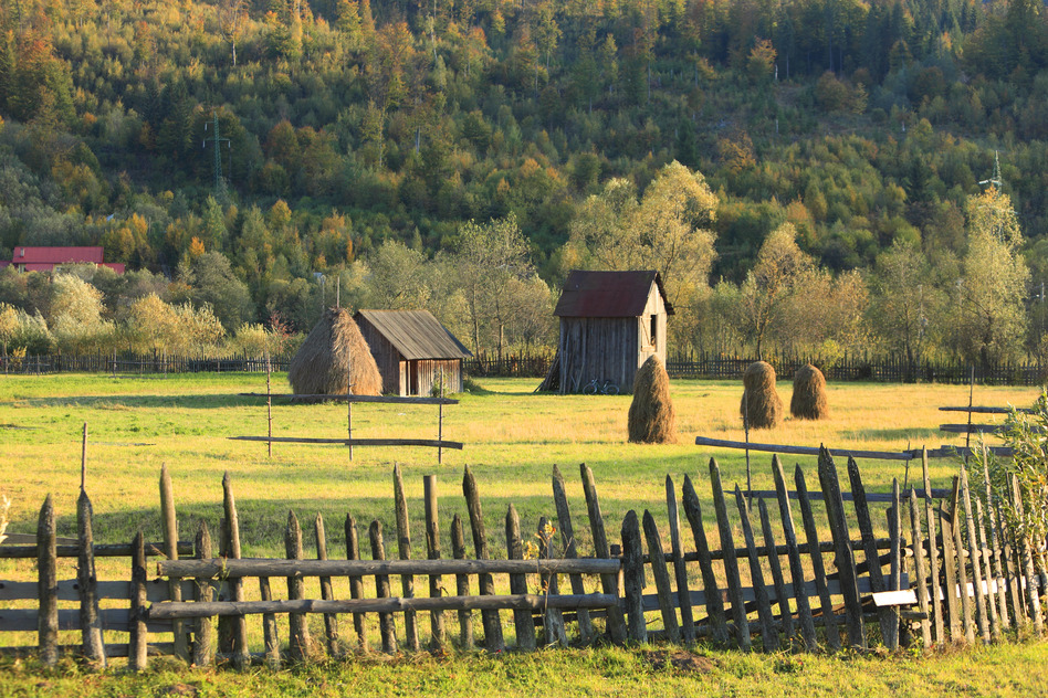 Bucovina Romania