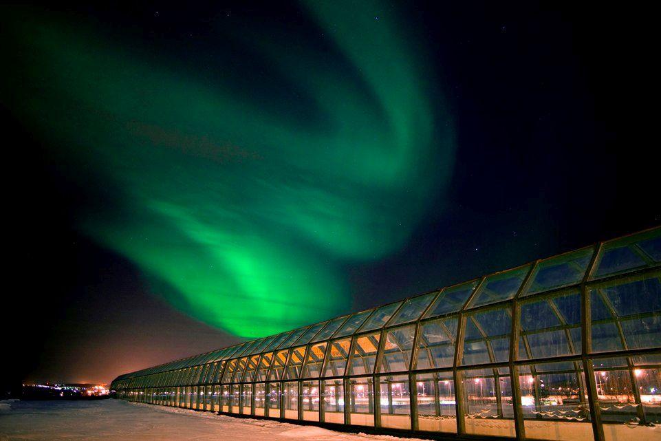 Arktikum Museum