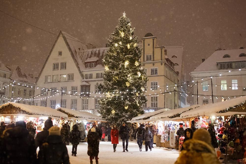 Christmas Tree in Raekoja plats
