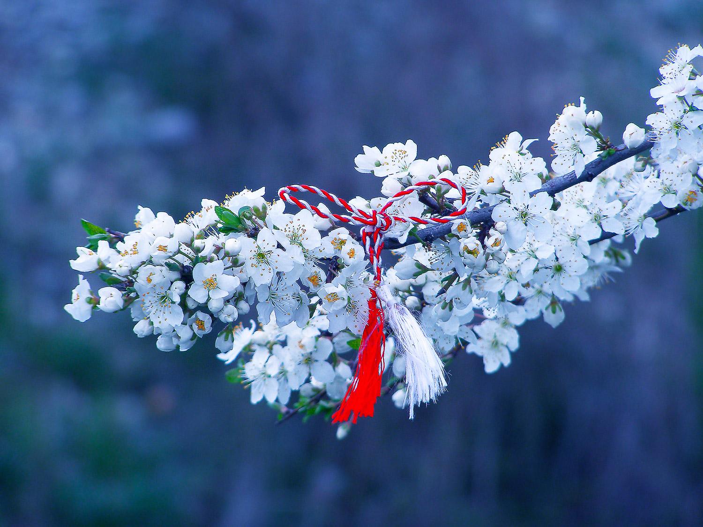 Romania's spring symbol