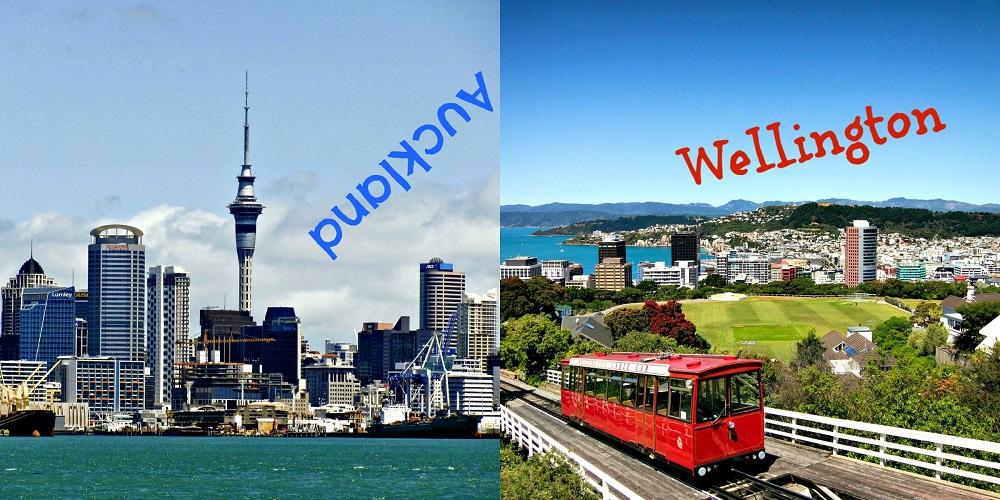 Wellington vs Auckland