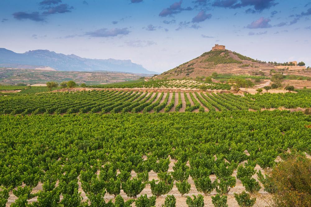 La Rioja region, Spain