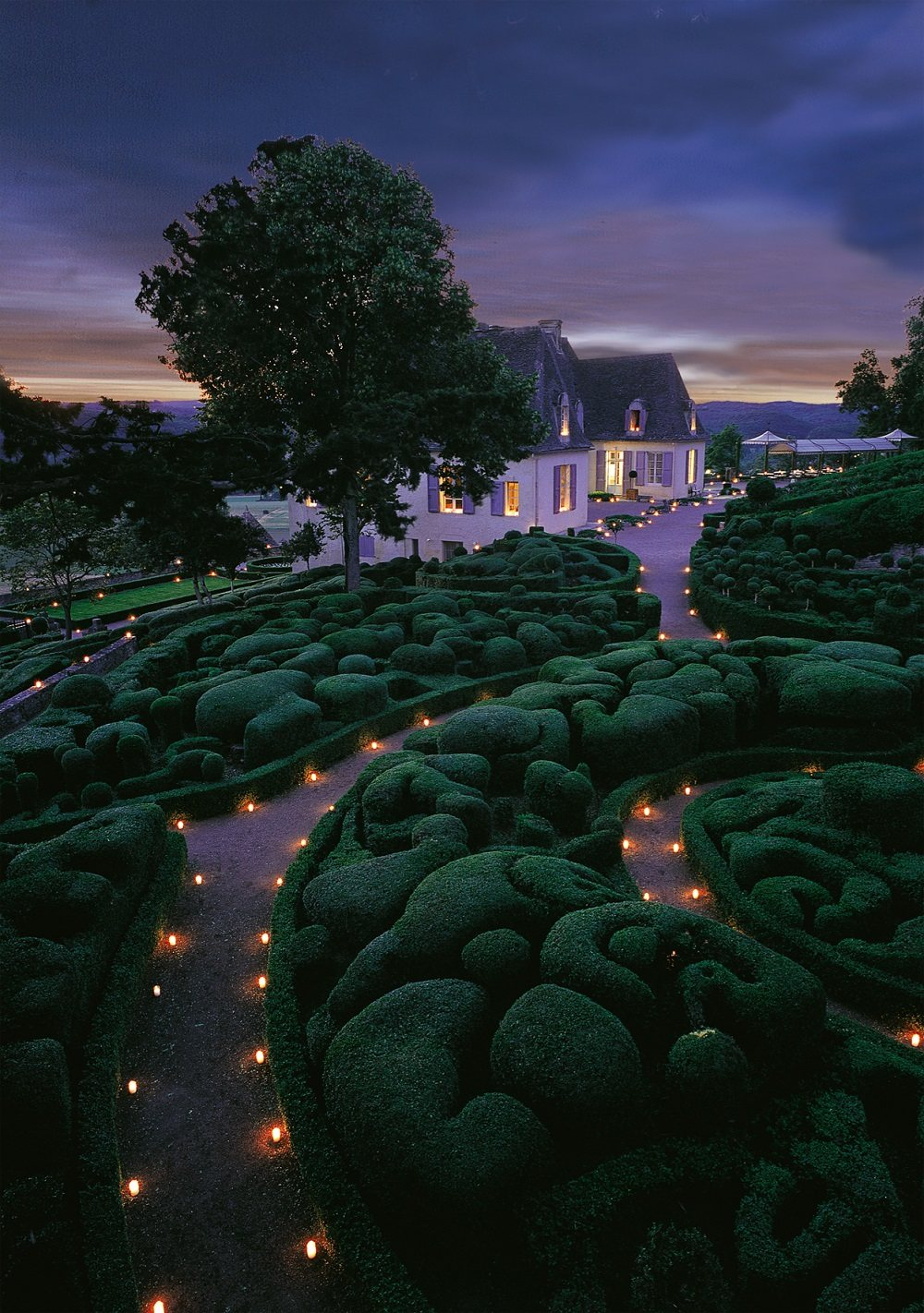 Garden lit by candles