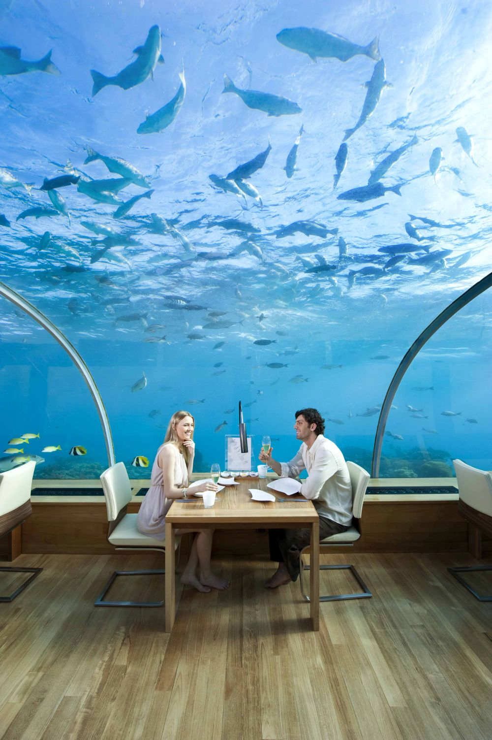 Dining Under the Sea