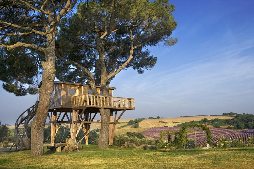 largest-treehouse-europe