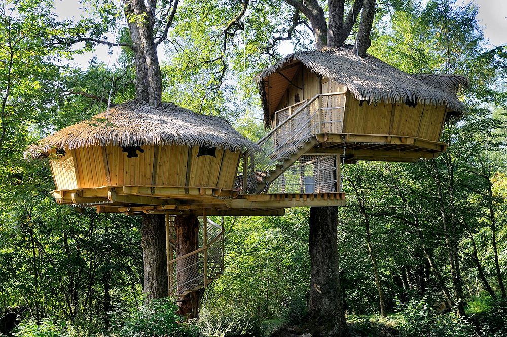 tree-cabin-france
