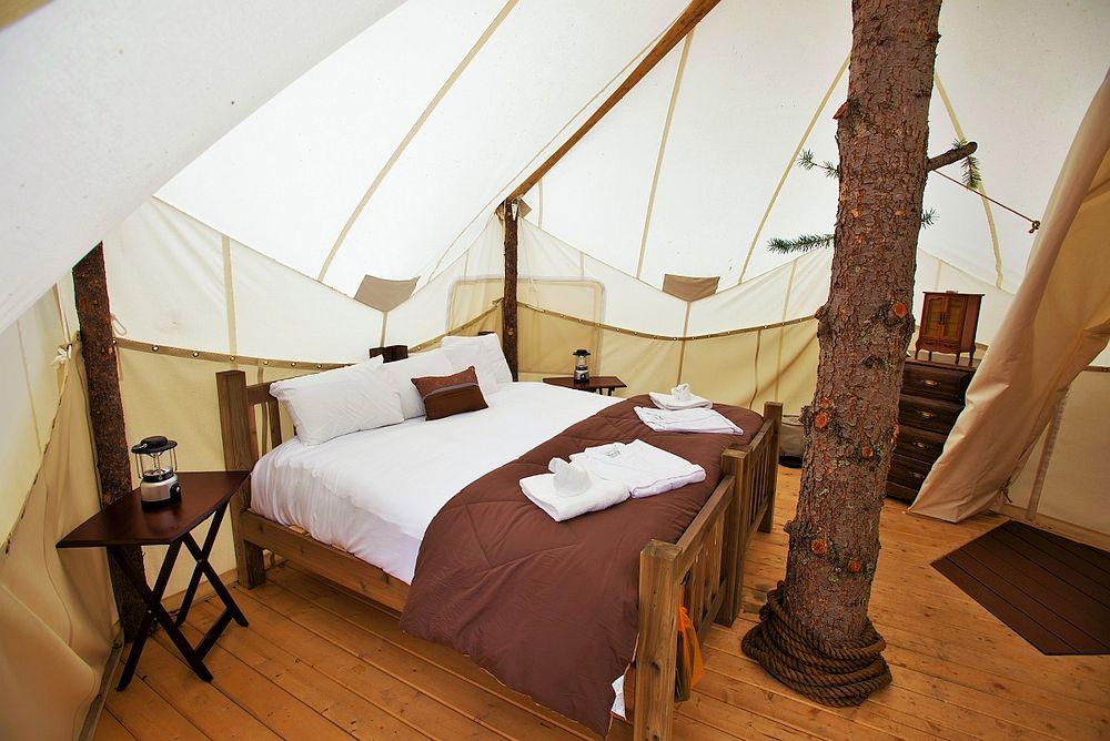 tree-tent
