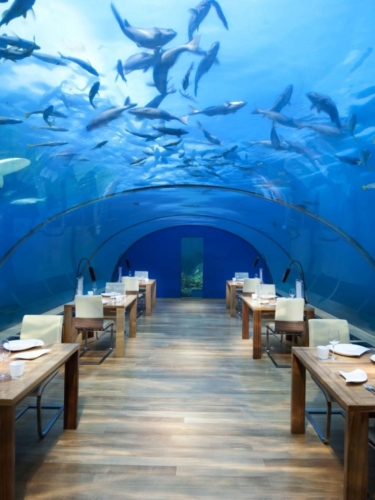 All-Glass Underwater Restaurant