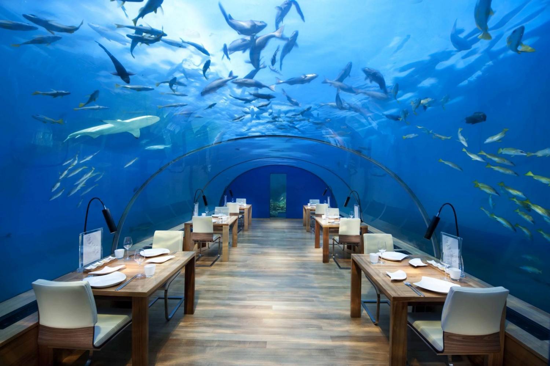 All-Glass Underwater Restaurant