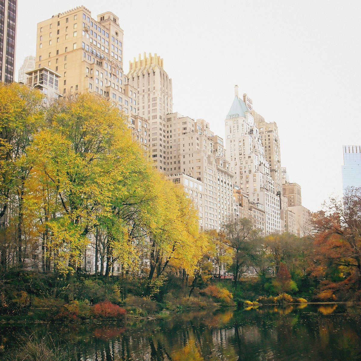 Central Park New York: Autumn In New York City In 24 Images