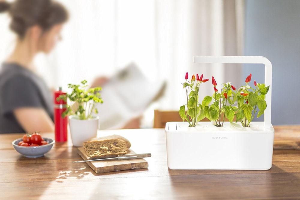 Smart garden for your room