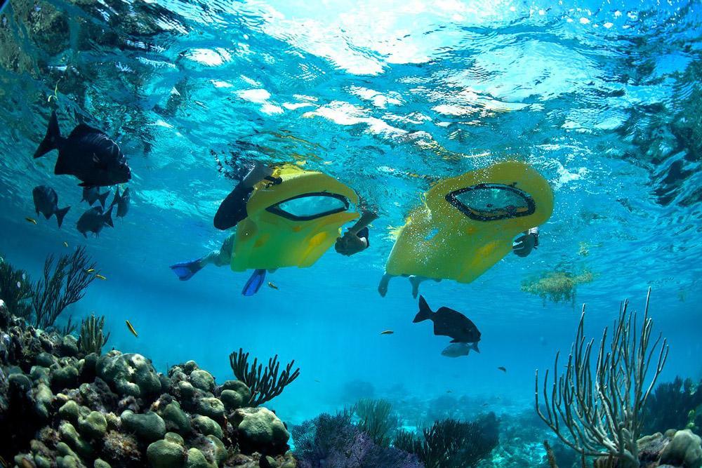 ReefBoard