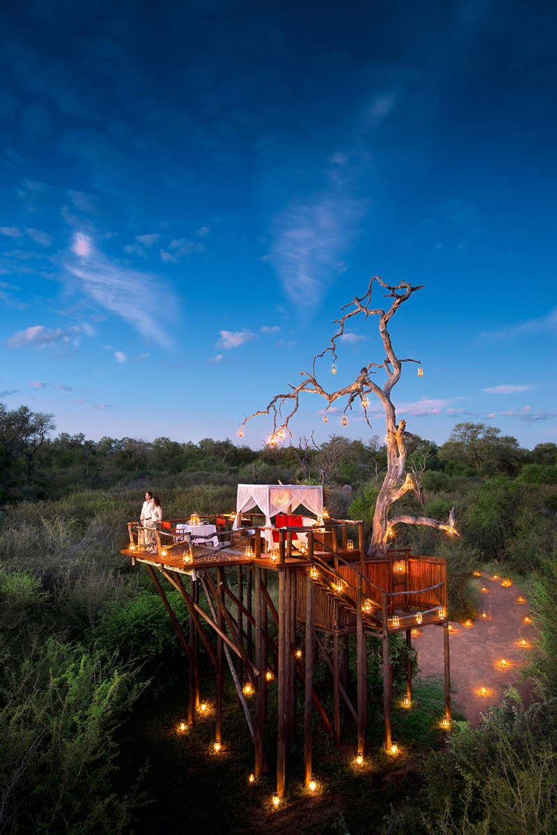 Romantic night in a treehouse