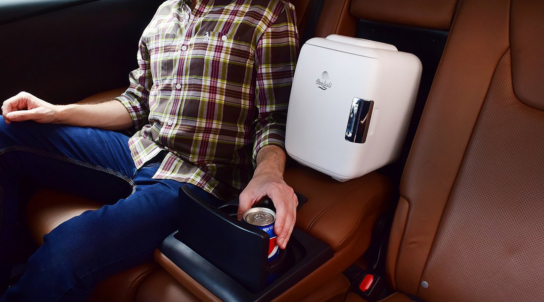 Electric cooler and warmer