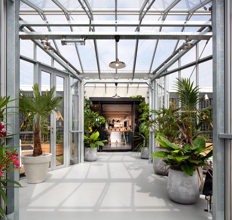 Rooftop garden with greenhouse