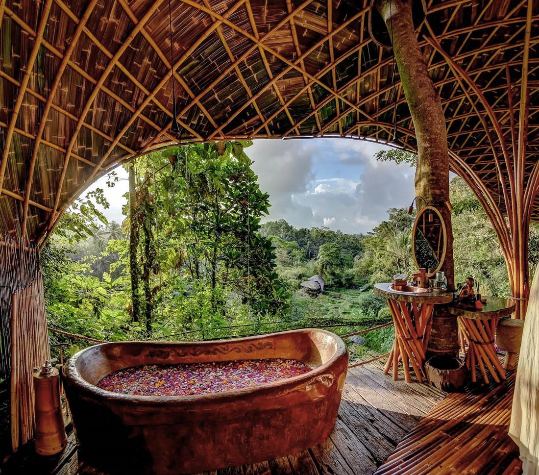 Jungle retreat in Bali