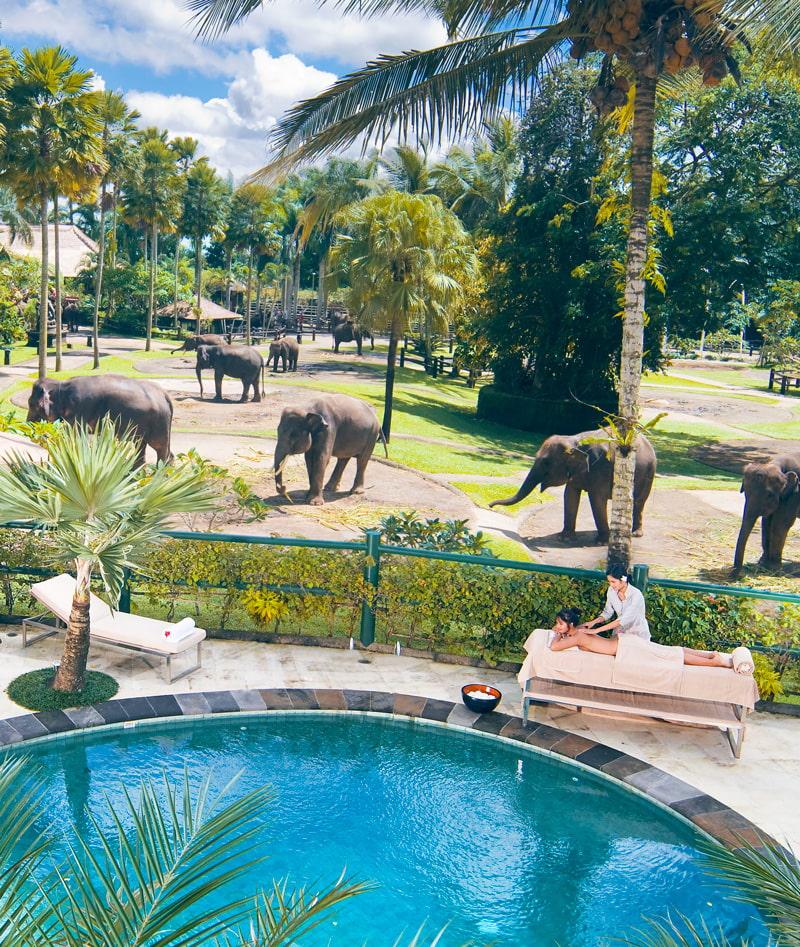 The Best Eco Safari Lodge in the World