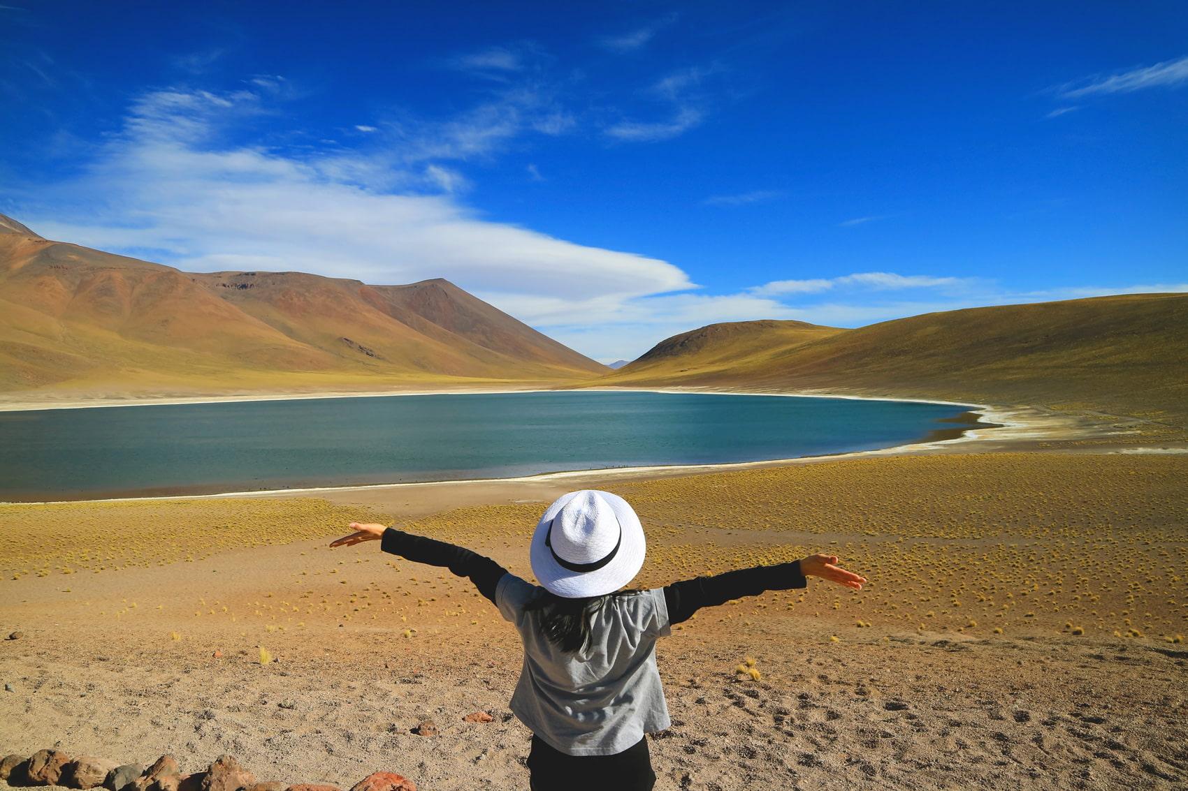 Miscanti Lagoon, Atacama Desert