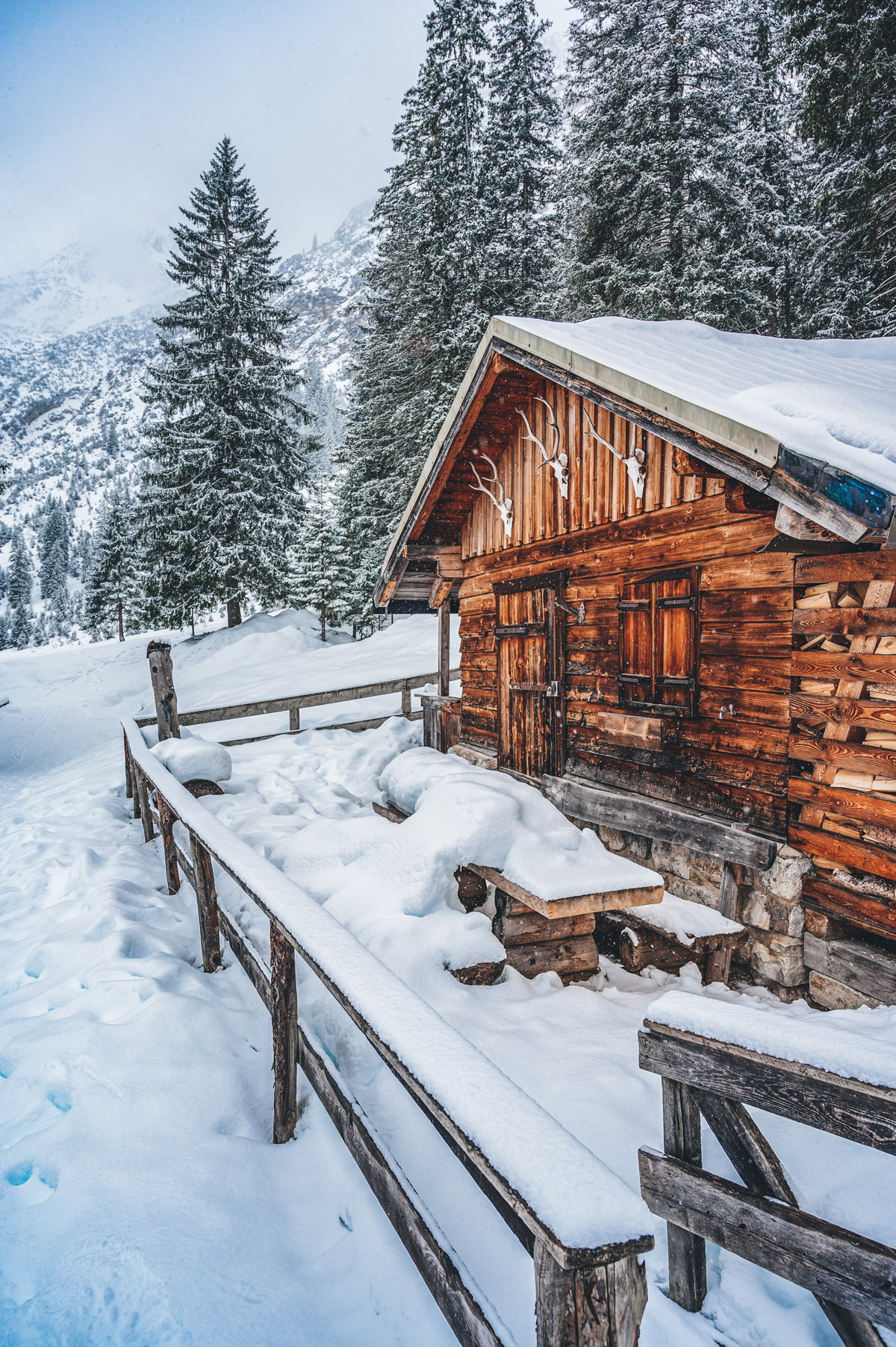 Remote cabin rental