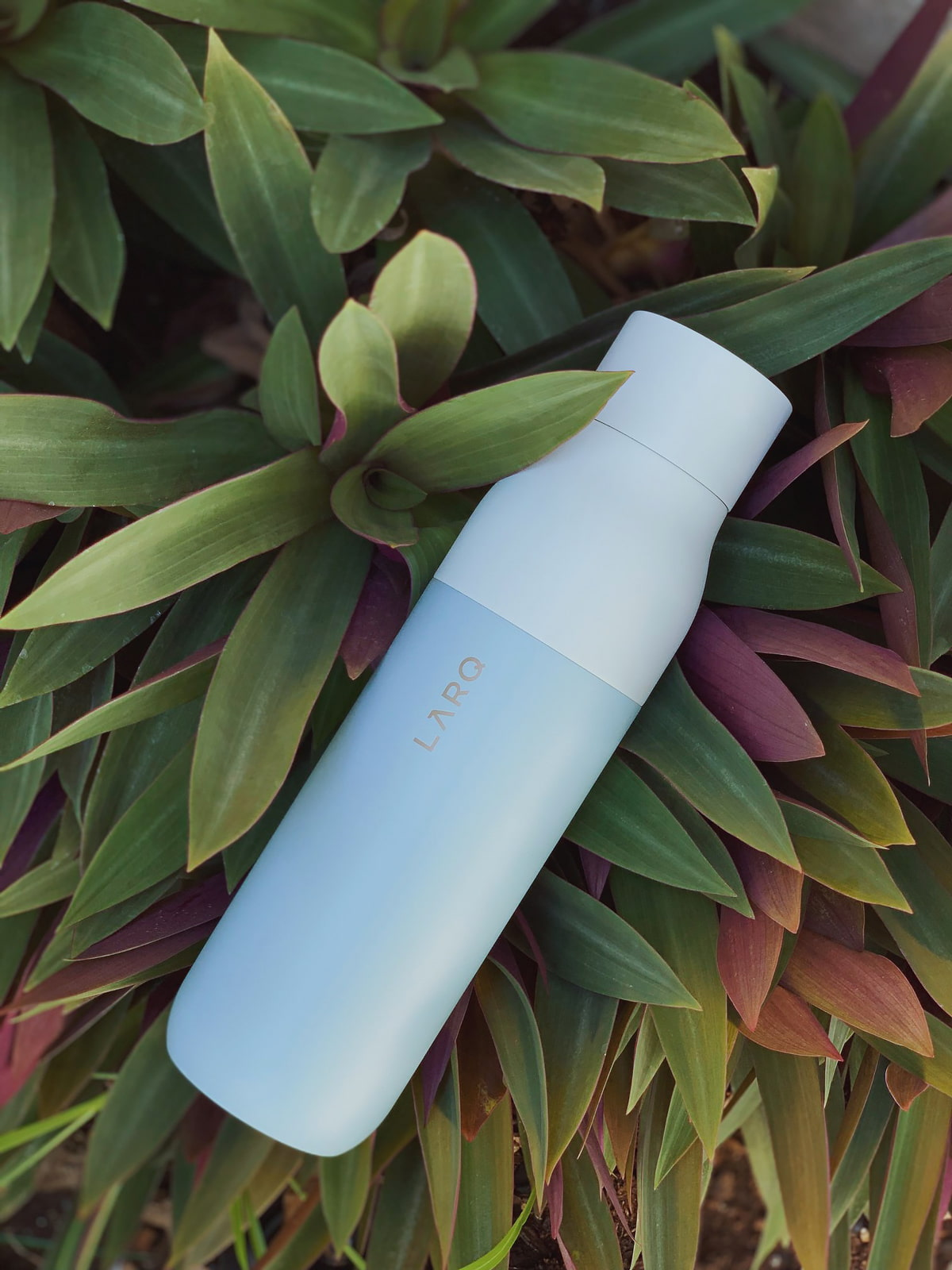 LARQ Insulated Bottle